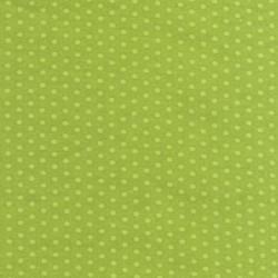 Spot On - Lime Mini