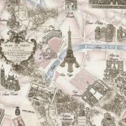 Paris - Pink Toile