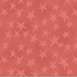 Buggy Barn Basic - Stars