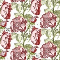 Hatters Tea Party - Antique Rose