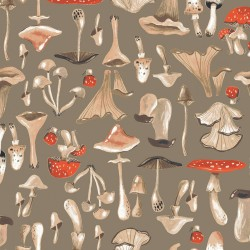 Natural History - Mushrooms
