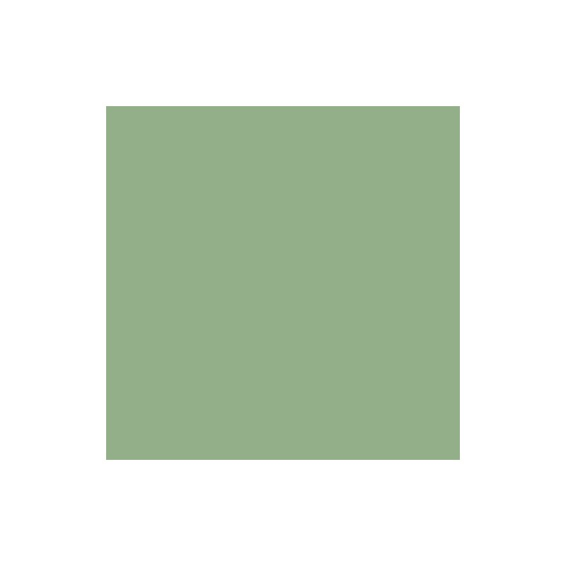 Light Sage Green