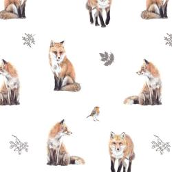 Příběhy ze Zahrady - Lišky...
