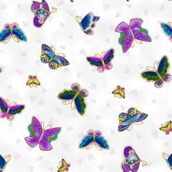 Feline Frolic - Butterflies...
