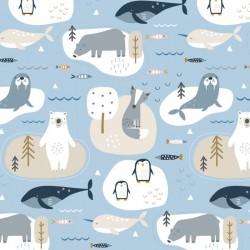 Habitat - Arctic
