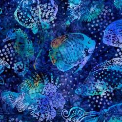Aquatica - Fish Royal